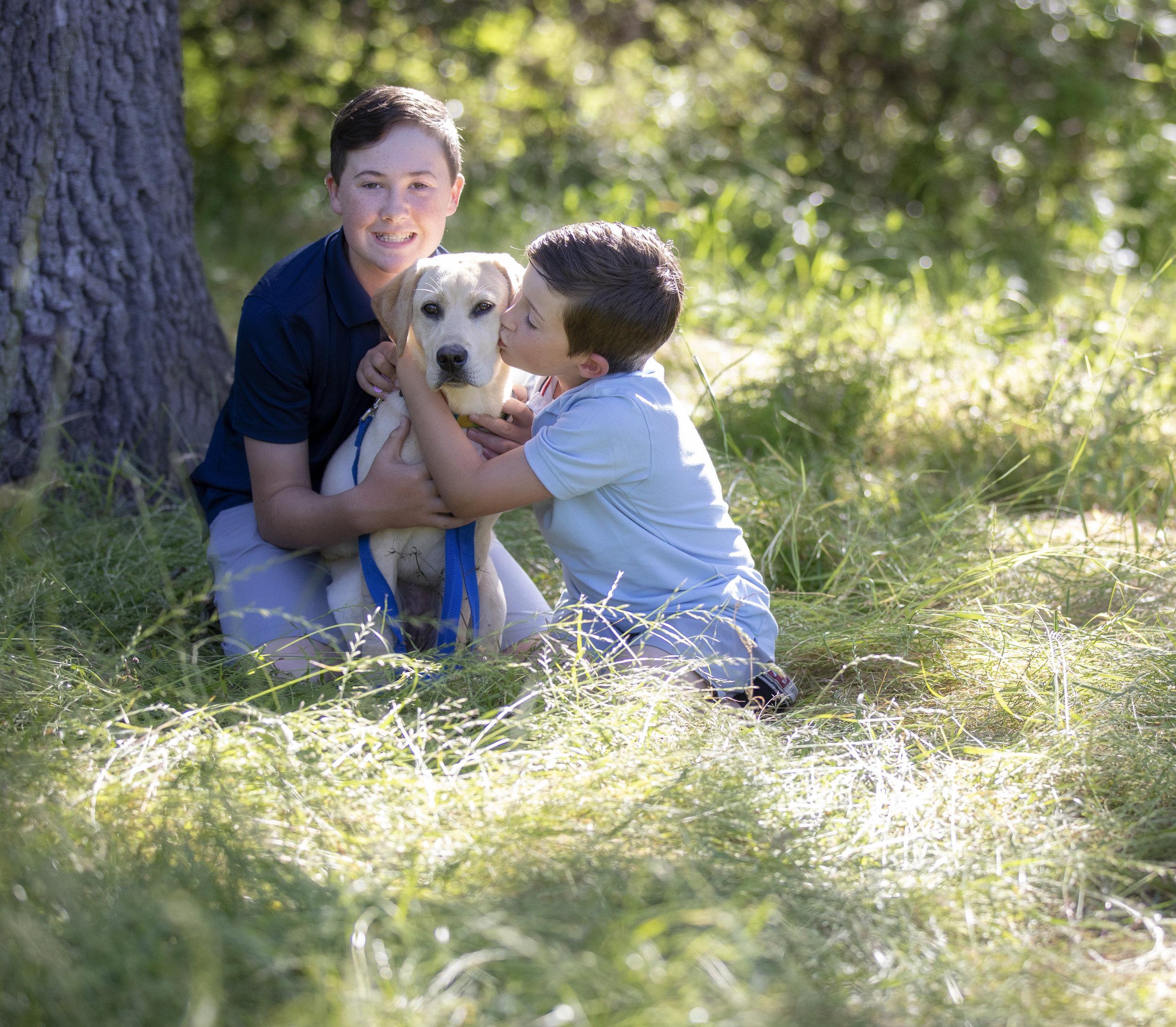 dog portraiture - family portraits - dog portraits