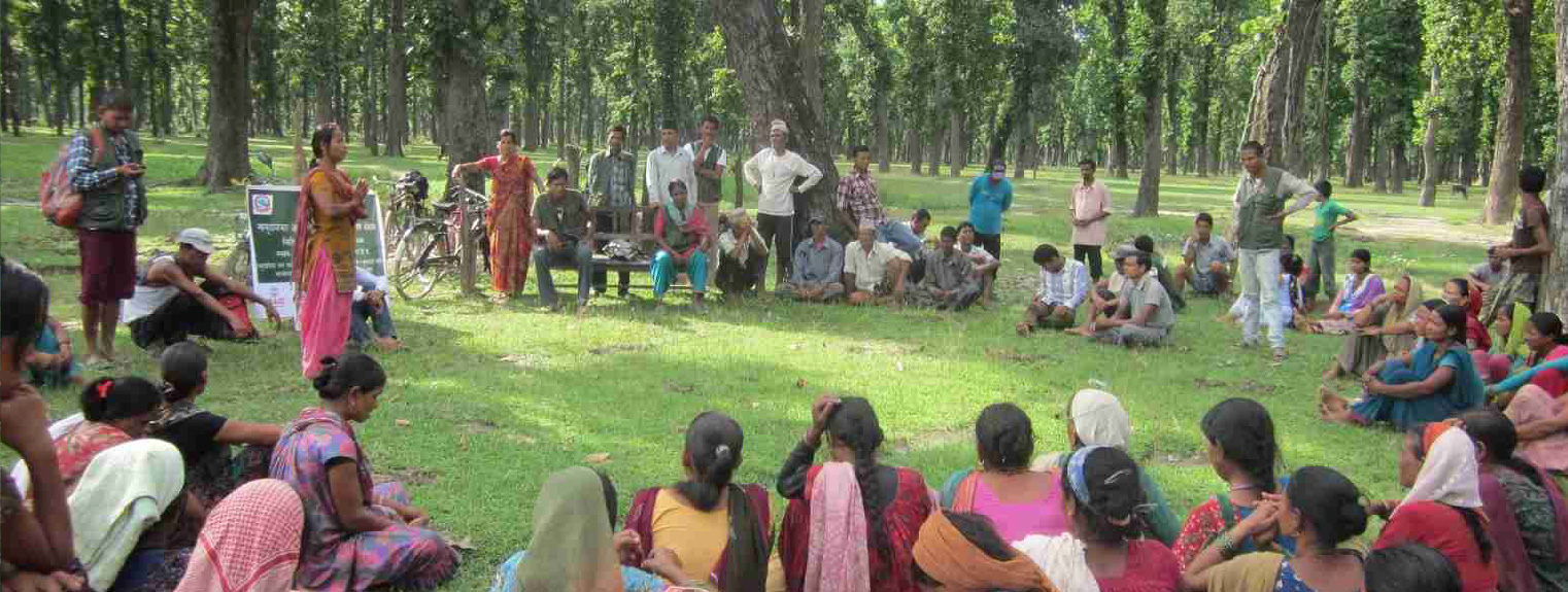 Community-Forest-Coordination-Committee.jpg