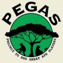 Pegas.png