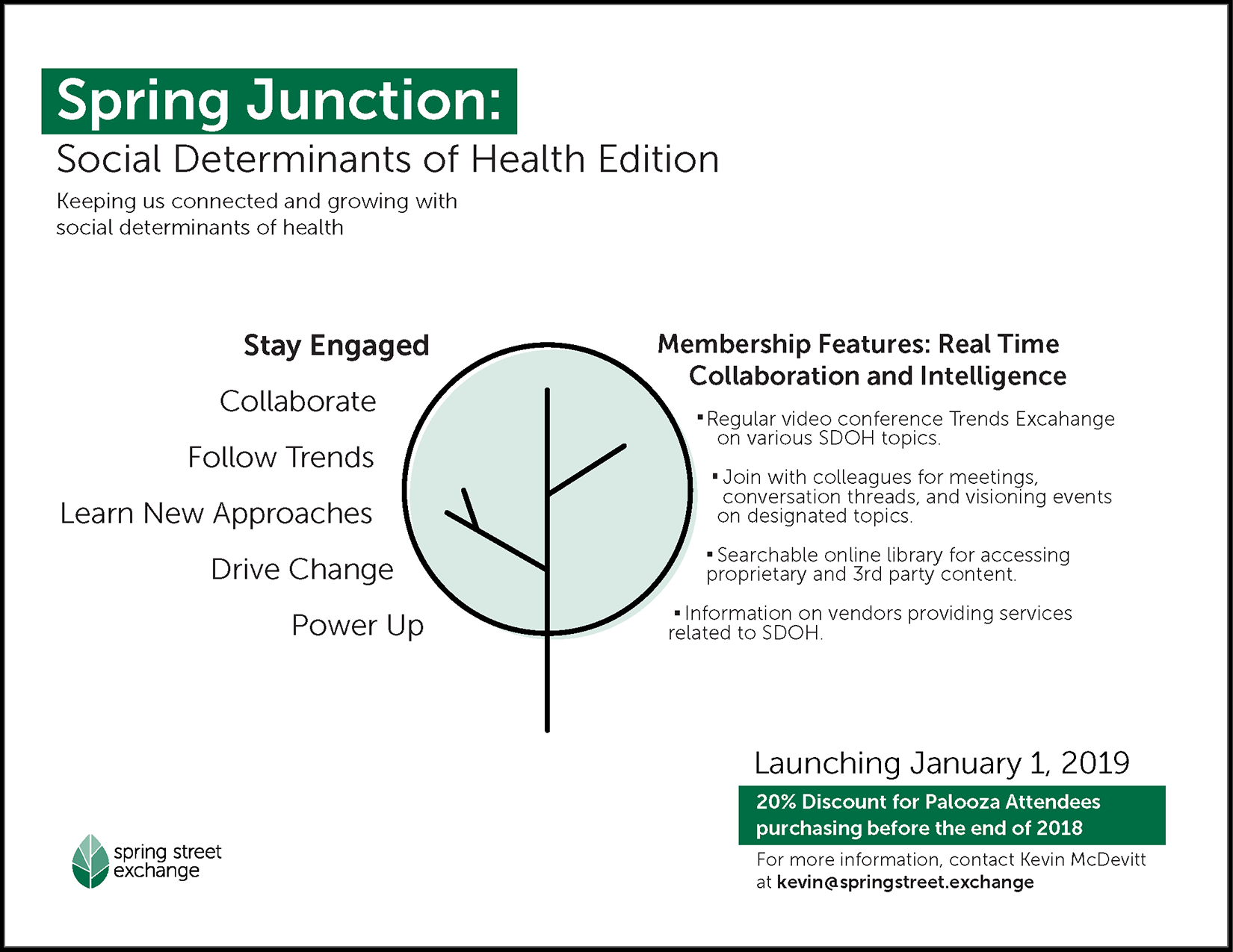 Flyer // Spring Junction: Social Determinants of Health Edition