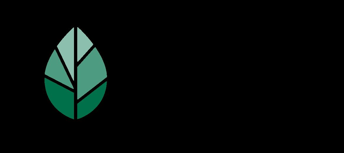 logo_SSX_color_trans-01.png