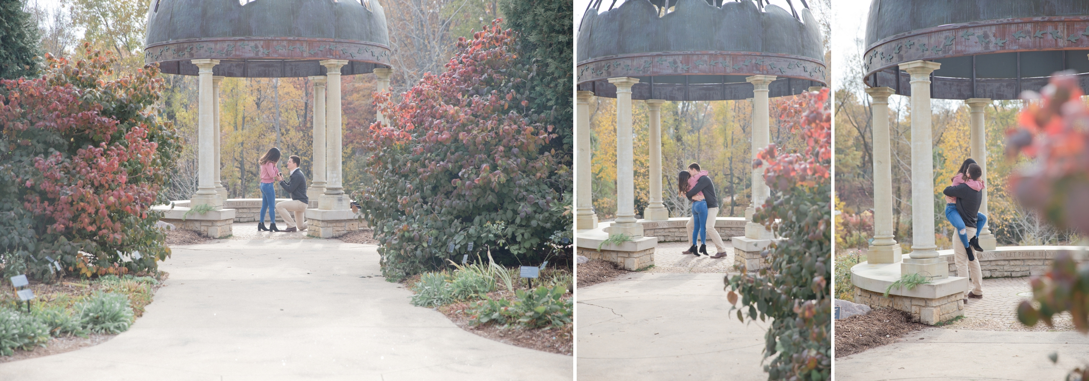 Wisconsin wedding photographer, Green Bay Botanical Gardens Proposal, Engagement Photos