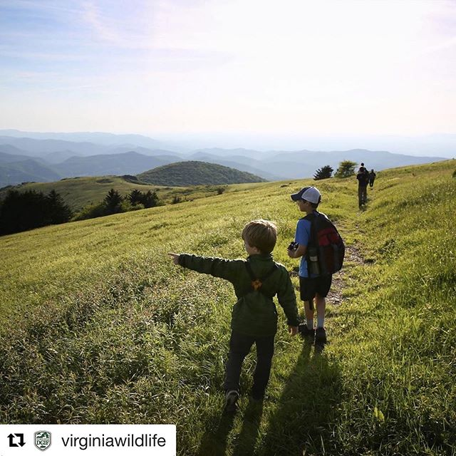 #Repost @virginiawildlife with @get_repost ・・・ Help us spread the word! The 2019 Virginia Wildlife Grant Program is now open for submissions through August 31st to connect youth to the outdoors.  To date, the Virginia Wildlife Grant Program has supported over 160 projects at nearly $250,000 impacting 44,000 youth.  Visit the link in our profile to learn all about the program and its application process. #vawildlife  #givingback #outdoors #virginia #nonprofit #education #youthprogram