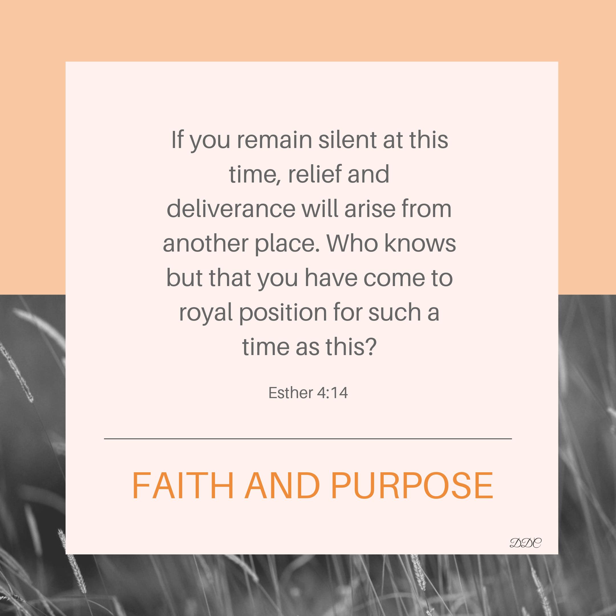 Fatih and Purpose.PNG