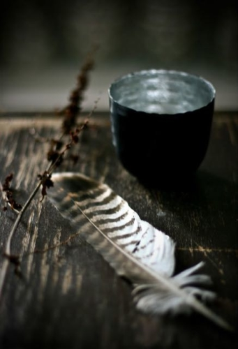 feather-and-bowl-e1435247799821.jpg