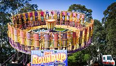 roundup-4325s.jpg