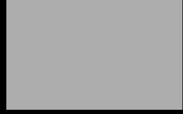 CCI Stone logo (dani grey).png