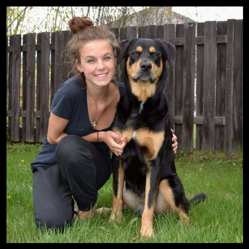 Stephanie Durante - Private TrainerStephanie's passion for working in the animal care industry was embedded in her at a young age, spending time volunteering at Kill Shelters and veterinary clinics. She soon learned the importance of training and communication between both handler and pet and knew the best way she could contribute, would be to help educate and build the relationship of the two. Since then, she has graduated from Animal Behavioral College and completed a variety of courses and seminars that have provided her with the knowledge of using a positive, reward based system to train force free between you and your companion – no matter the size, age, and breed. She believes in treating every dog as if they were her own!