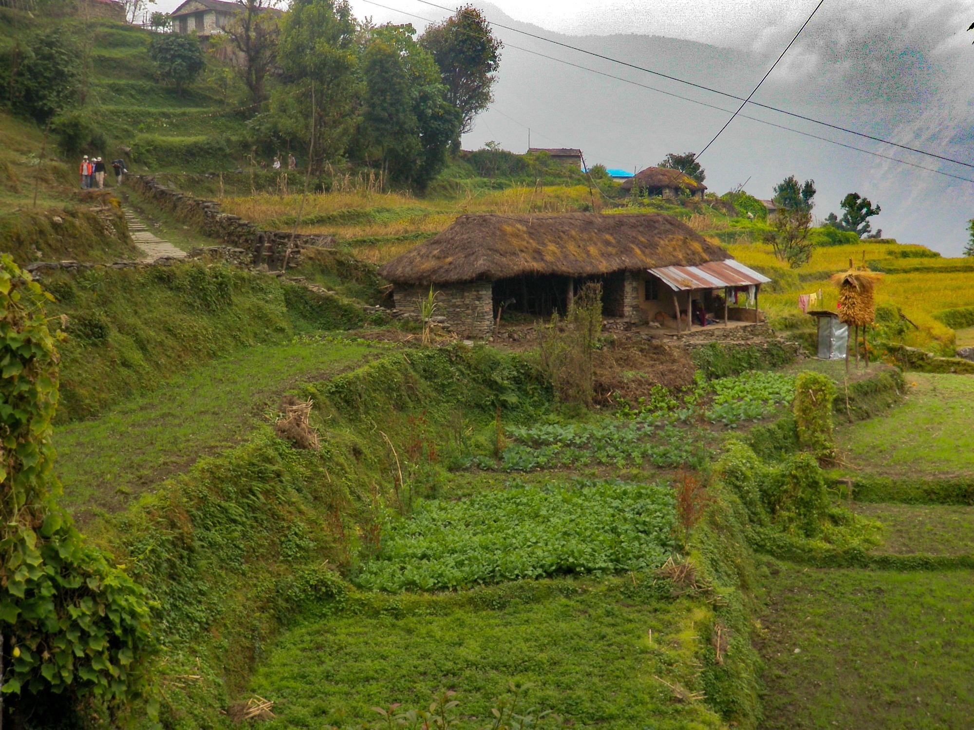 nepal-22.jpg