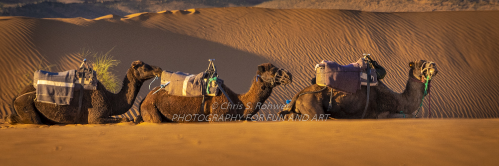 morocco-42.jpg
