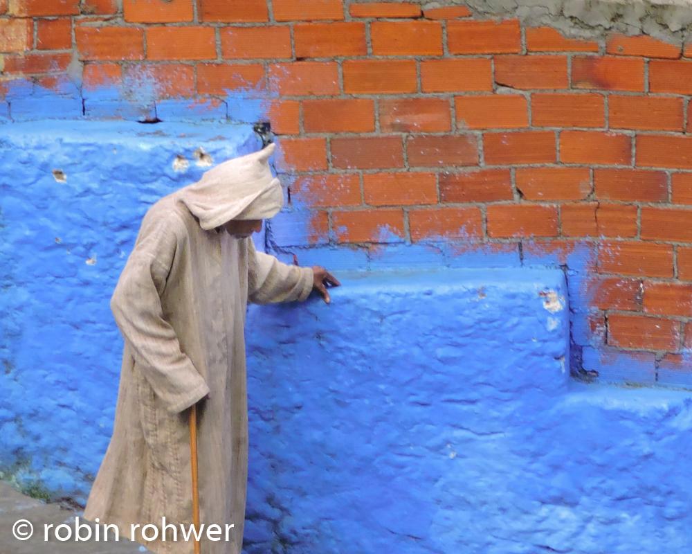 Morocco Robin-2.jpg