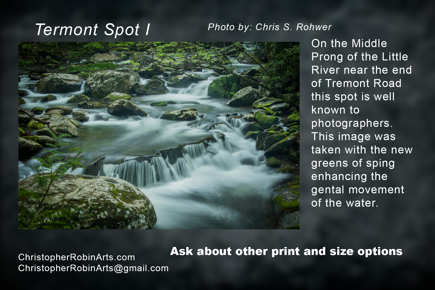 Tremont Spot I.jpg