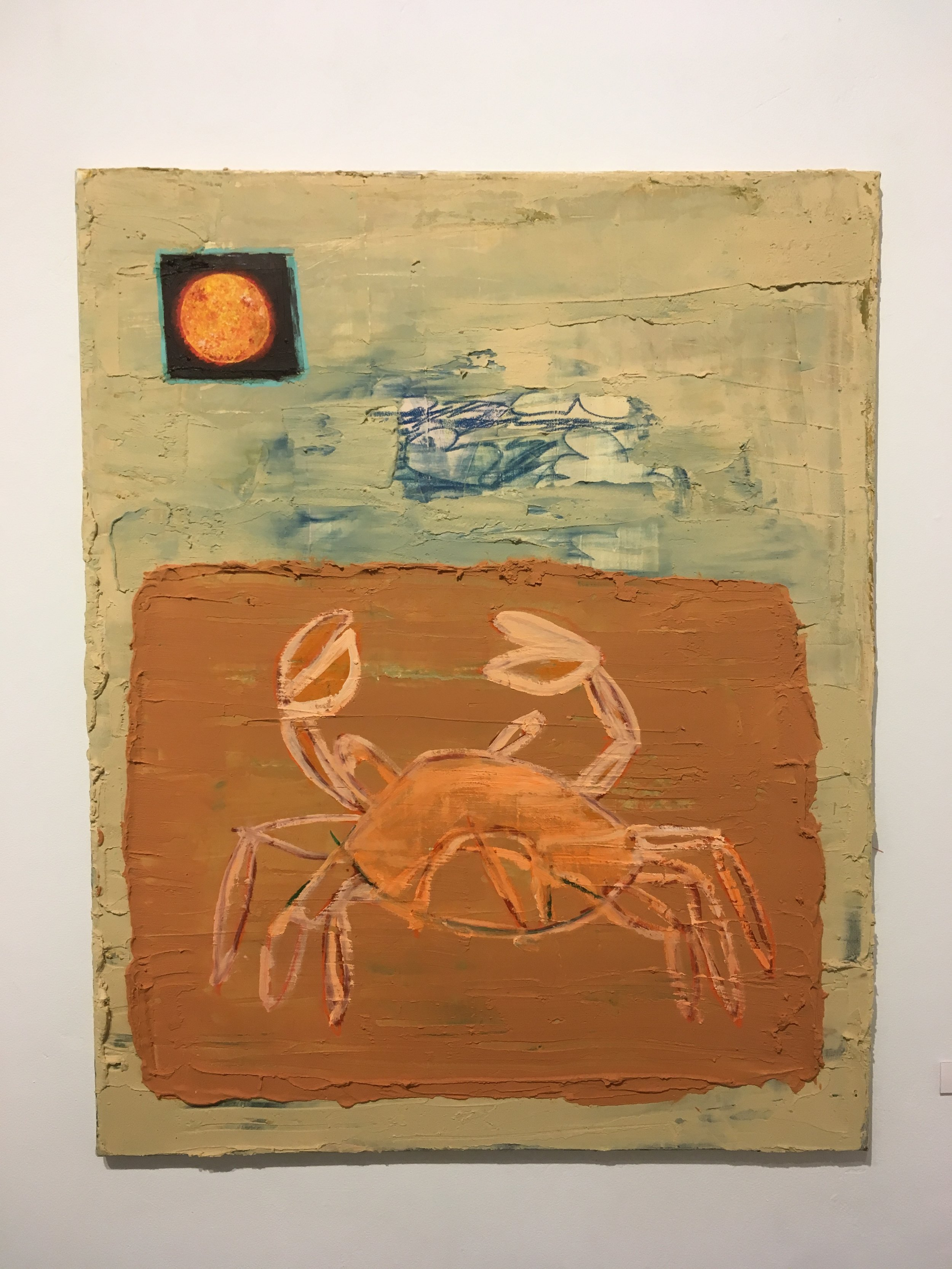 Crab on Sunny Day
