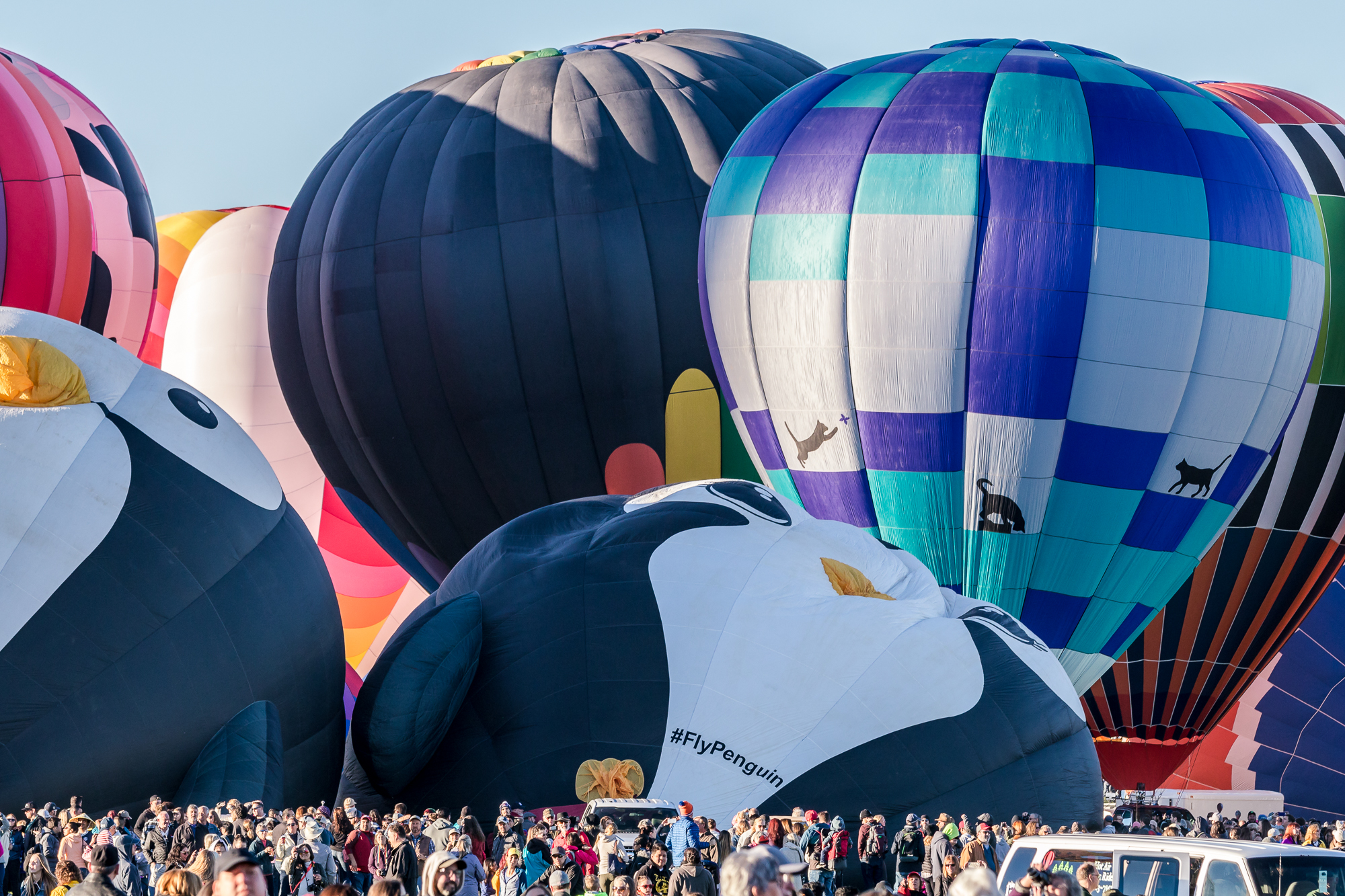 Shooting telephoto compresses the crowds against the balloons and shows how big the balloons are compared to humans.