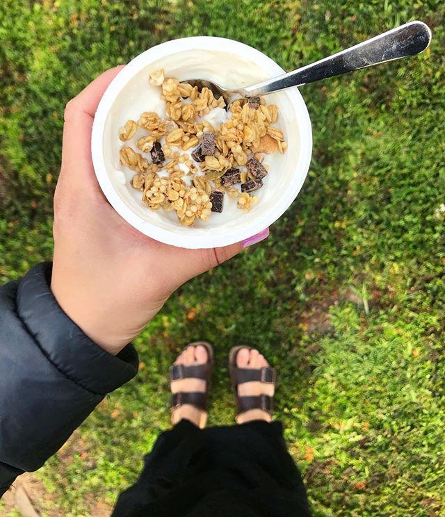 post morning yoga fuel ⚡️🧘🏻♀️✨ . . . . . #breakfast #goodmorning #riseandshine #morningyoga #yogaflow #vinyasa #modo #modoyoga #modocommunity #yogafamily #yogaislife #wakeupandyog #yogaeverydamnday #happyhumpday #humpday #midweekmotivation #healthy #healthylifestyle #healthybreakfast #healthyfoodporn #foodphotography #ftiness #fitfam #fitlife #fuelyourbody #eatrealfood #dailypractice #yogacommunity #namaste