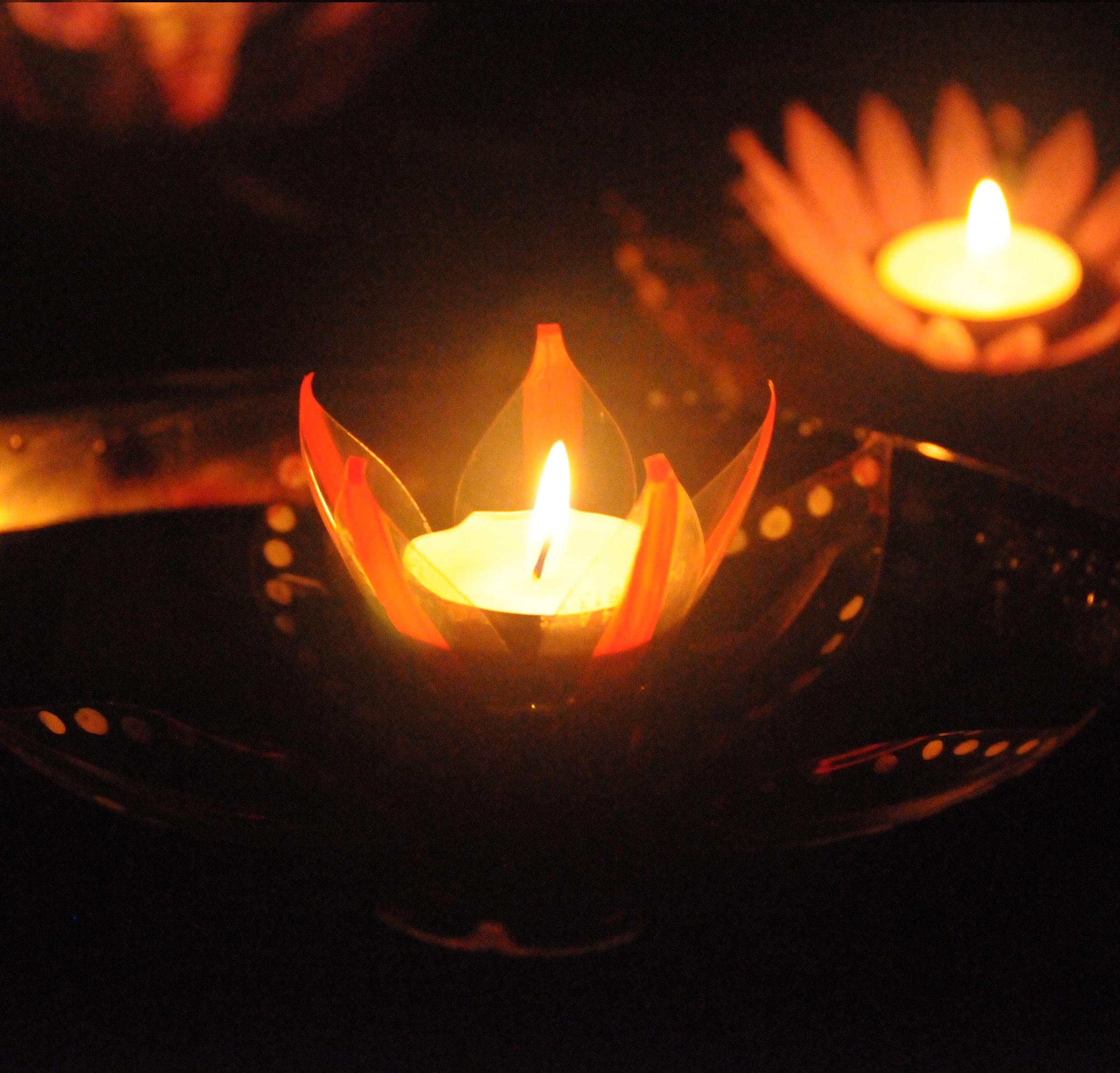 Diwali Flowers - 2014