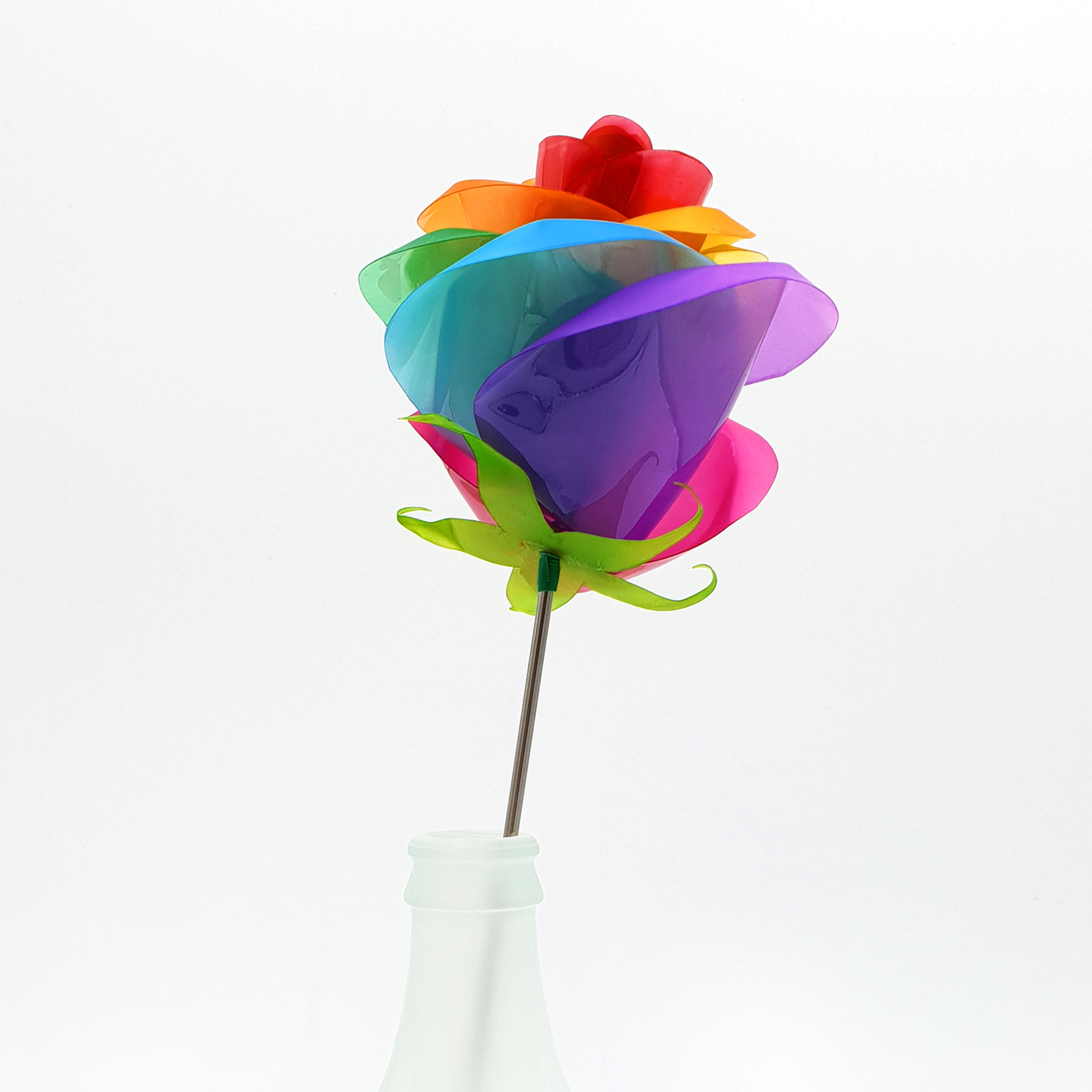 Rainbow Rose 3 Square.jpg