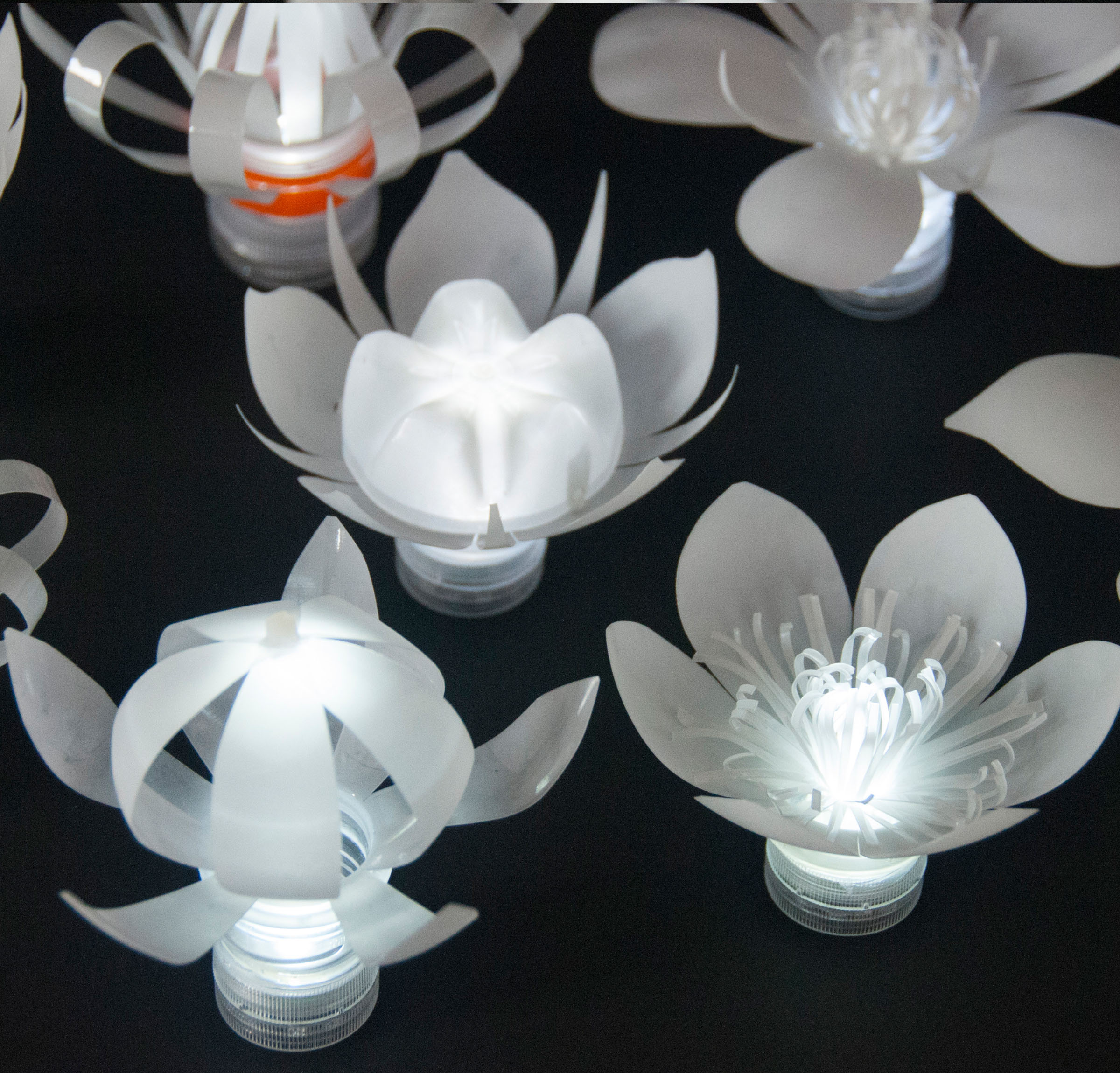 LED Plastic Bottle Flowers.jpg