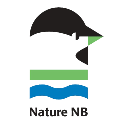 Nature NB Logo - No background.png