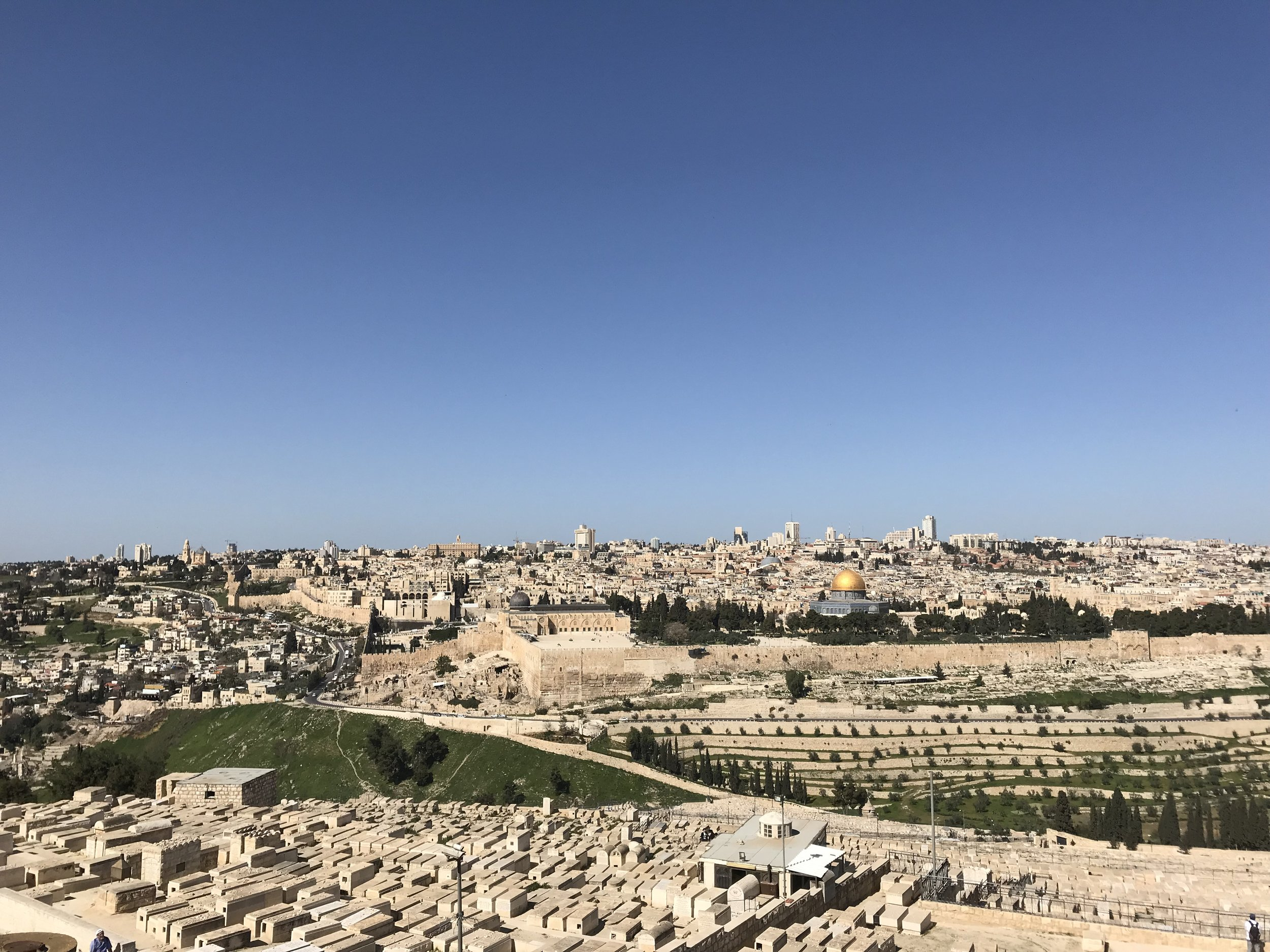 OneLife Adventure to israel -