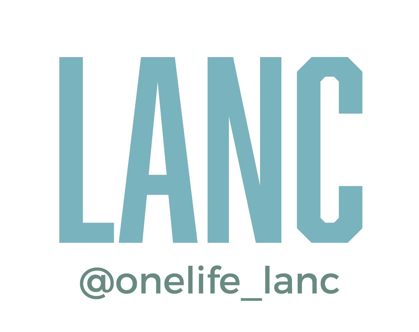 OneLife-website-ideas-10.jpg
