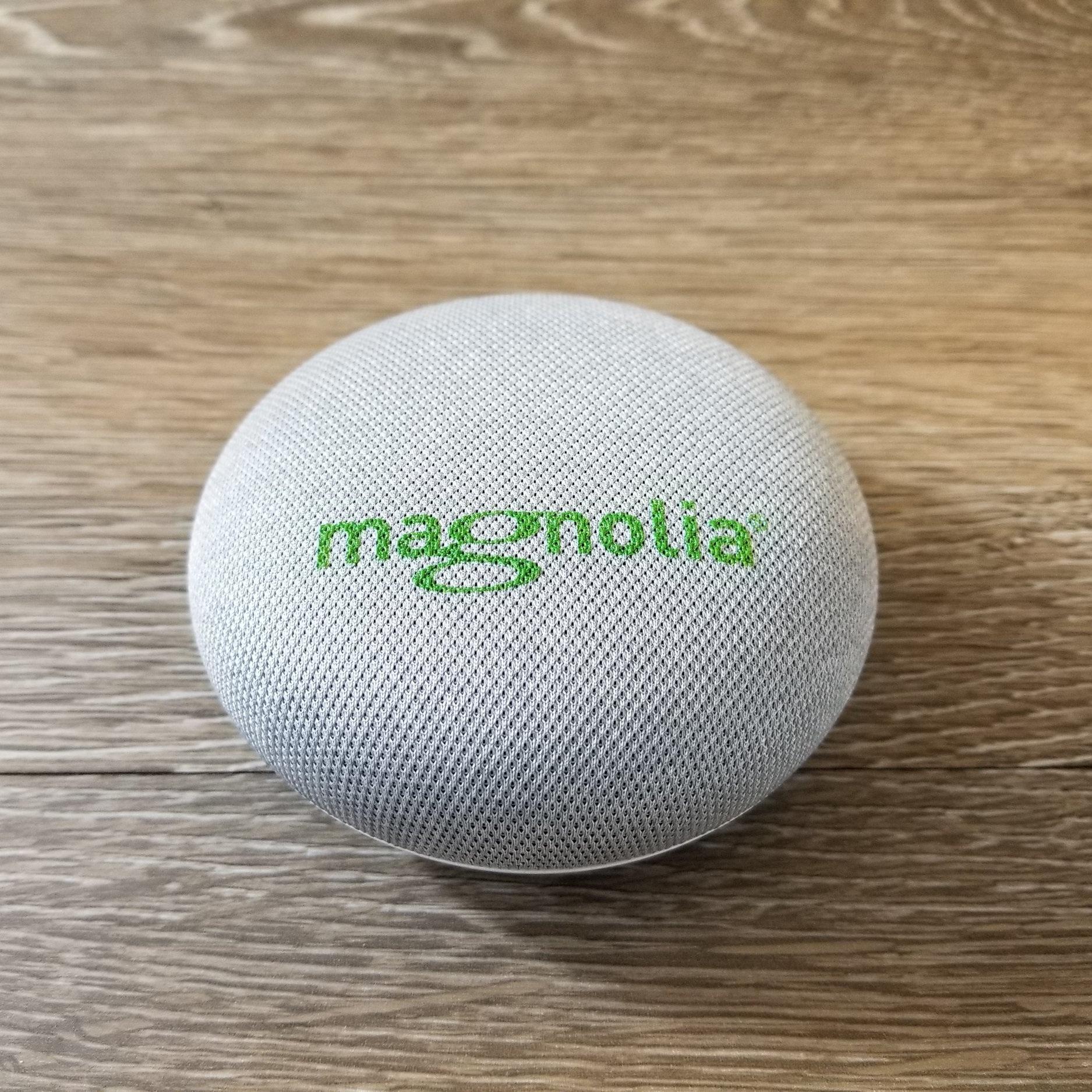 Branded Google Smart Speakers -