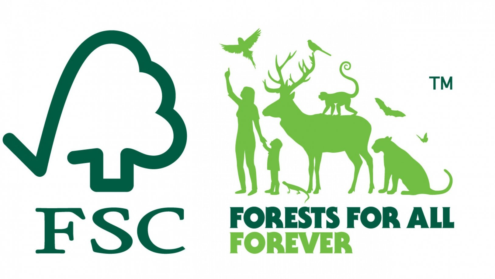 Forests For All - our notebooks are certified eco-friendly by the Forest Stewardship Council (FSC).