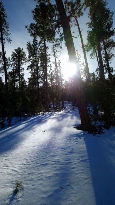 Big Pine 2019.JPG