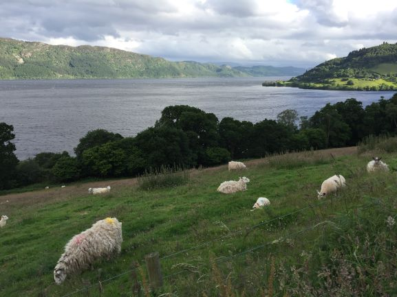 Looking over Loch Ness and Castle Urquhart (in the distance)