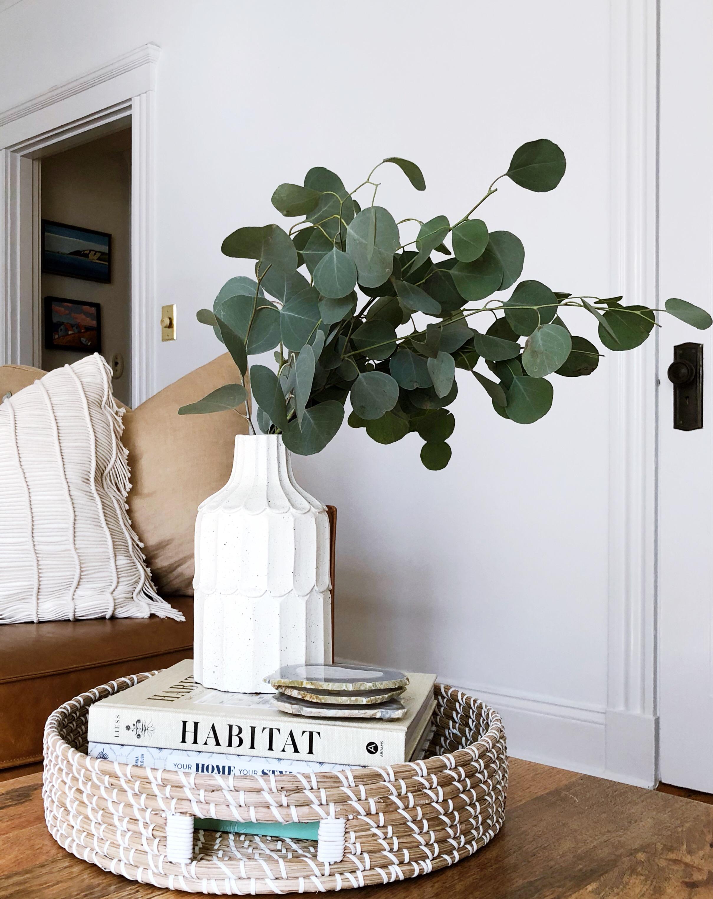 Trim Design Co Eucalyptus Fall Decor