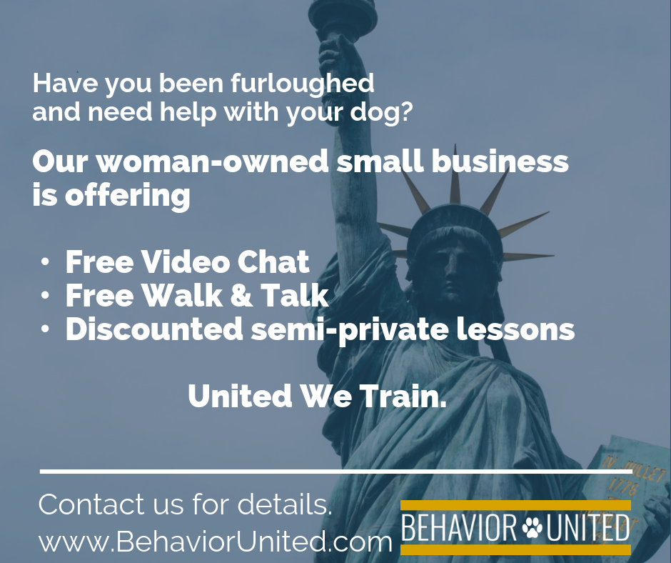 Our woman-owned small business is offering • Free Video Chat • Free Walk & Talk • Discounted semi-private lessons United We Train..png