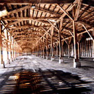 timbers-186x186.jpg