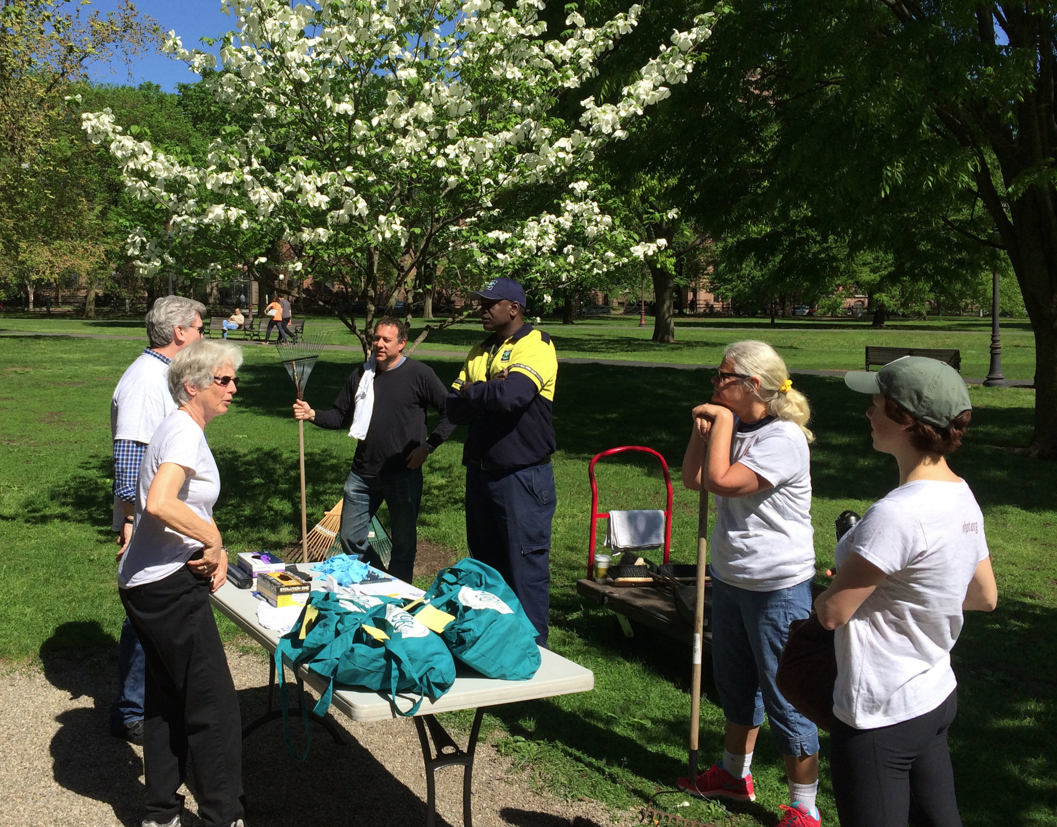 The New Haven Preservation Trust volunteers to clean the New Haven Green, a much-loved historic resource of the city.