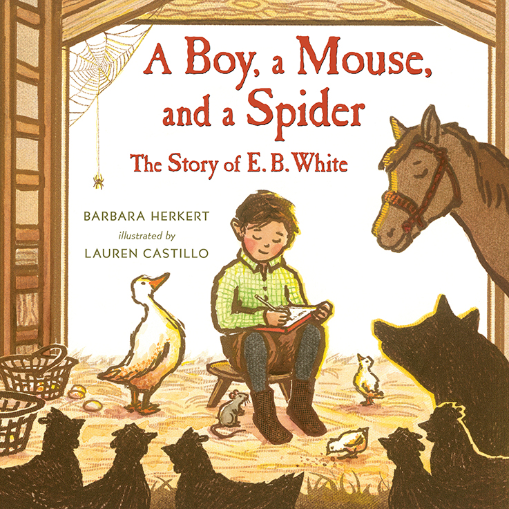 Castillo, Lauren - 2017_09 A BOY A MOUSE AND A SPIDER - PB - RLM PR.jpg