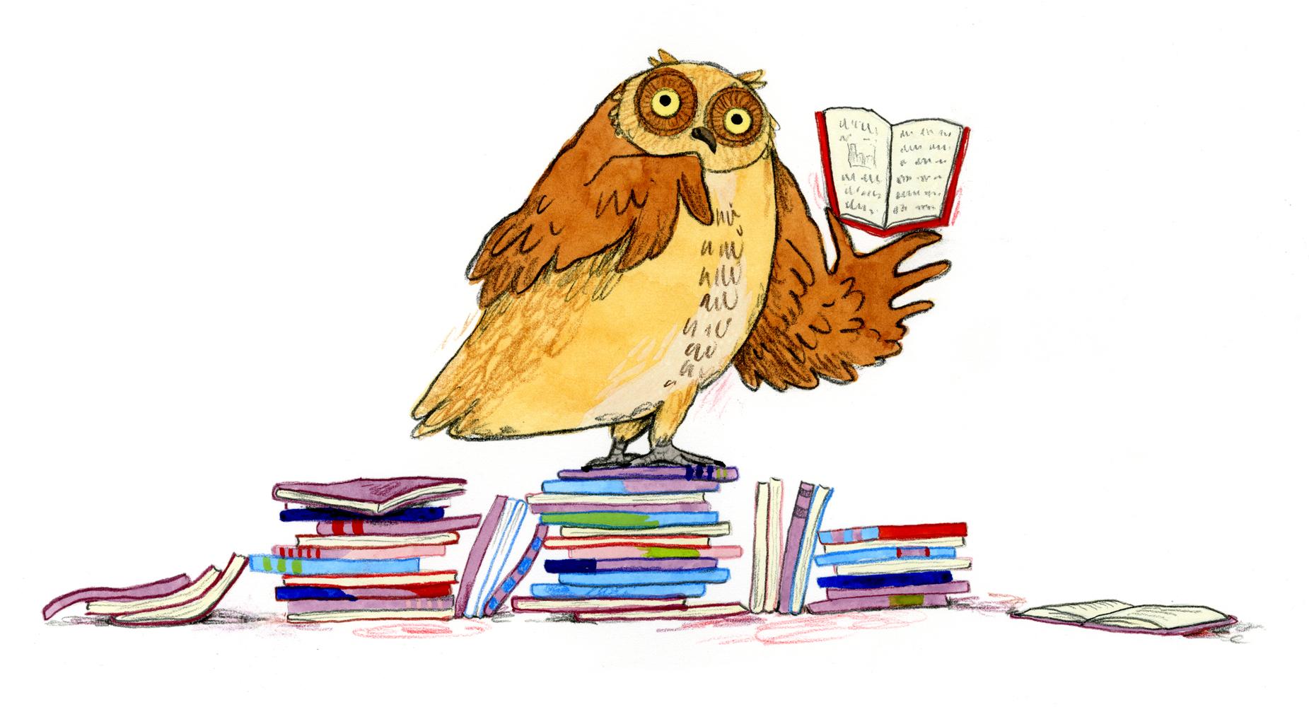 06 Farley Junior Great Books owl.jpg