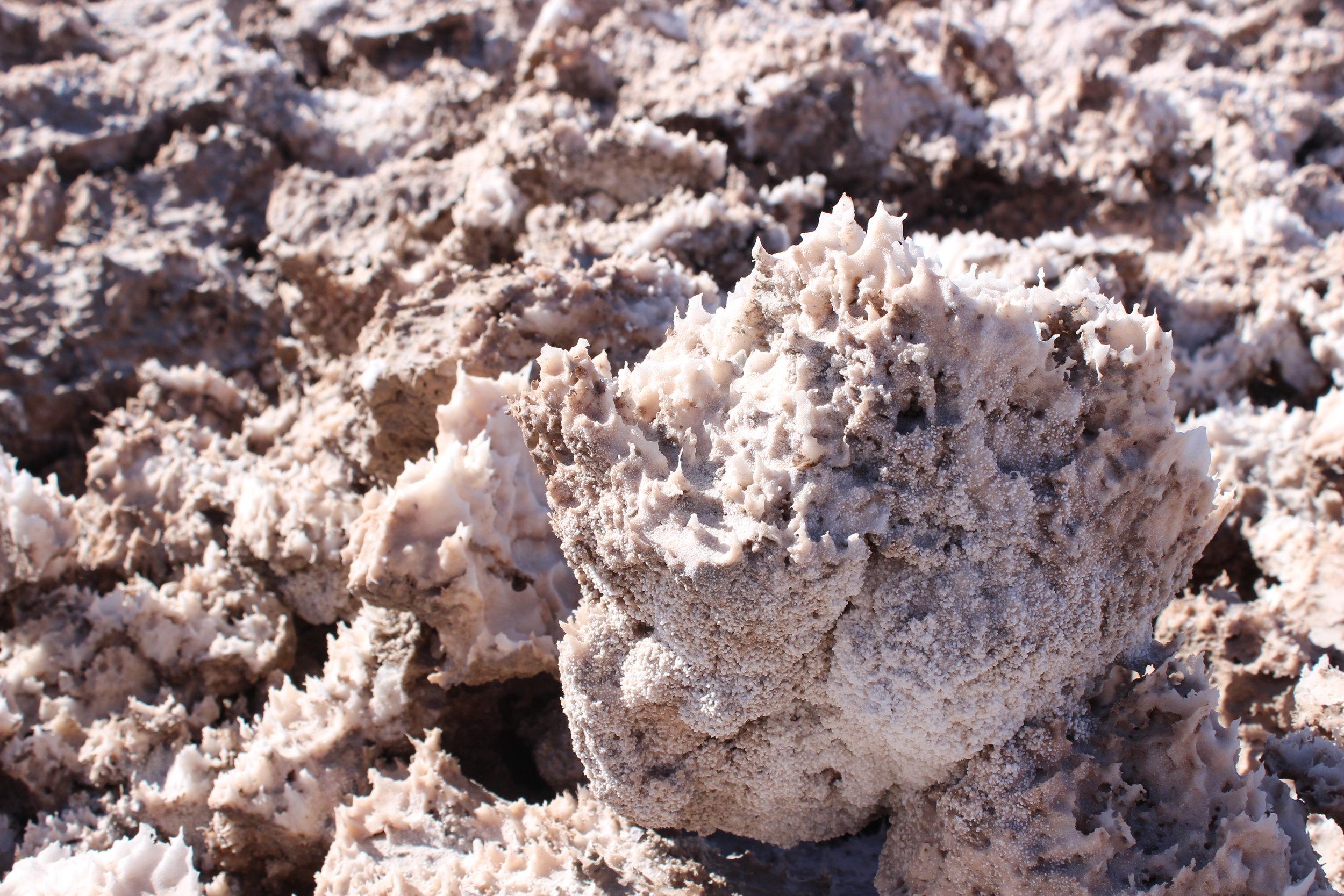 Salt Crystals found on the terrain of the Salar de Atacama,  Hannah Rowan