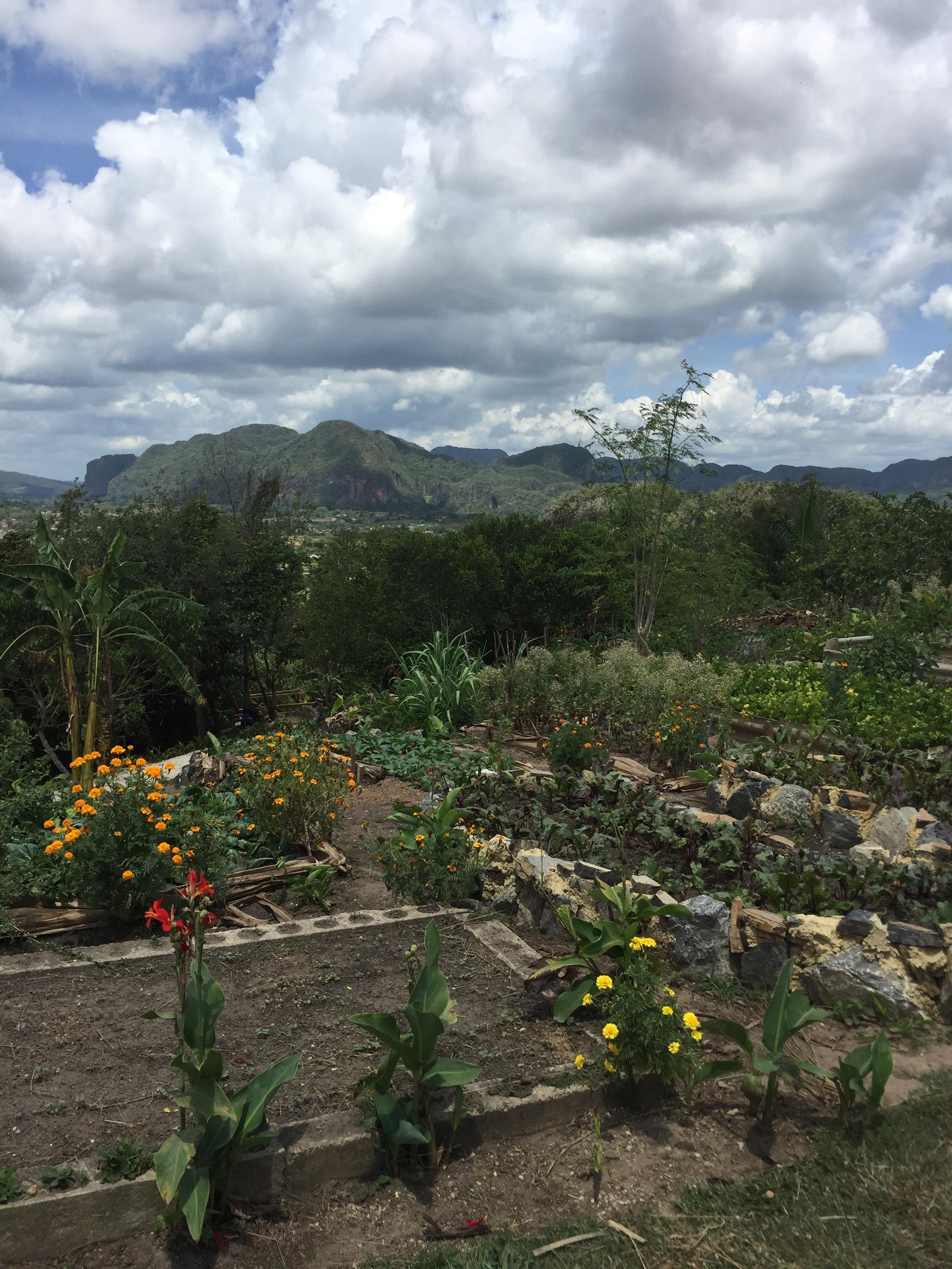 7- Vinales Valley.jpg