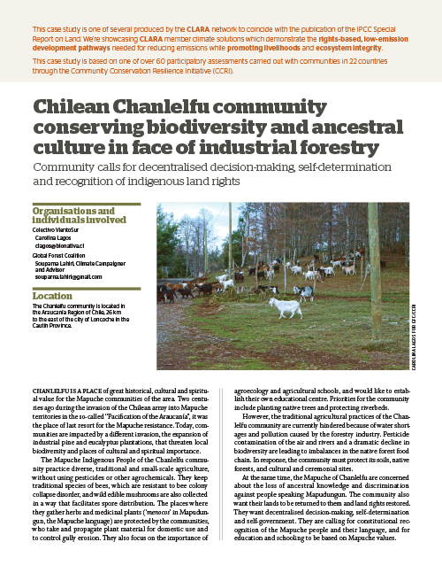 Global Forest Coalition - Chile