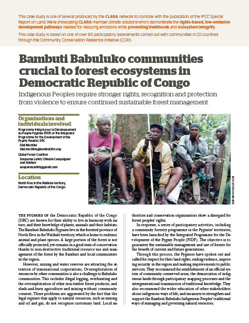 Global Forest Coalition - DRC