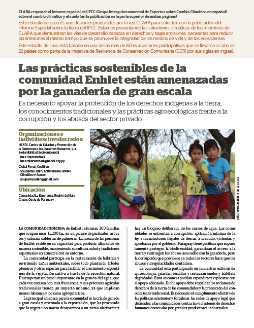 Global Forest Coalition - Paraguay - SP