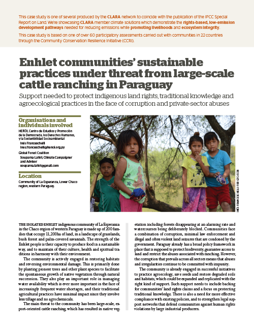 Global Forest Coalition - Paraguay