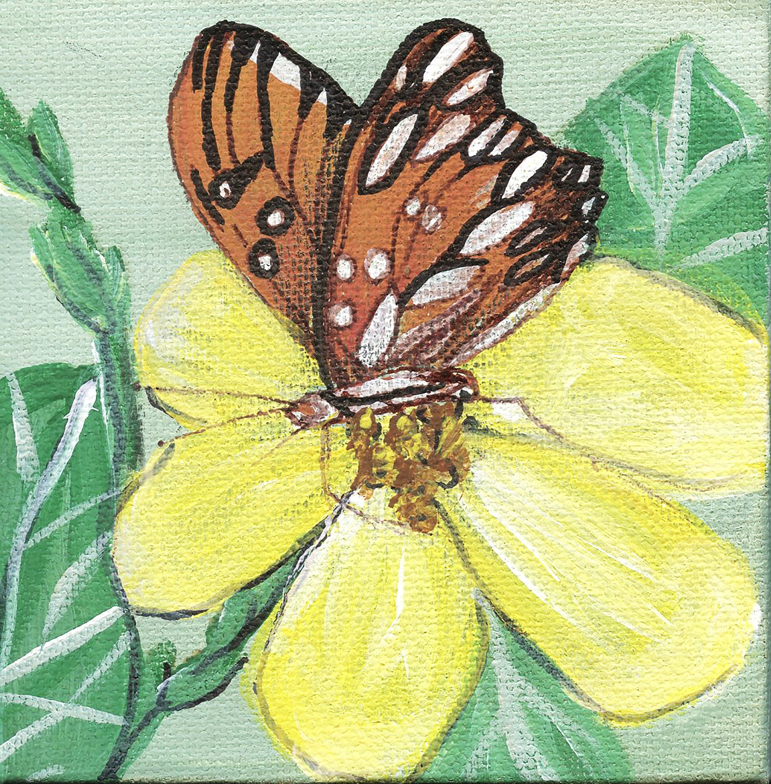 The Little Things - Inspired by our loofah vines and the butterflies who love their nectar.