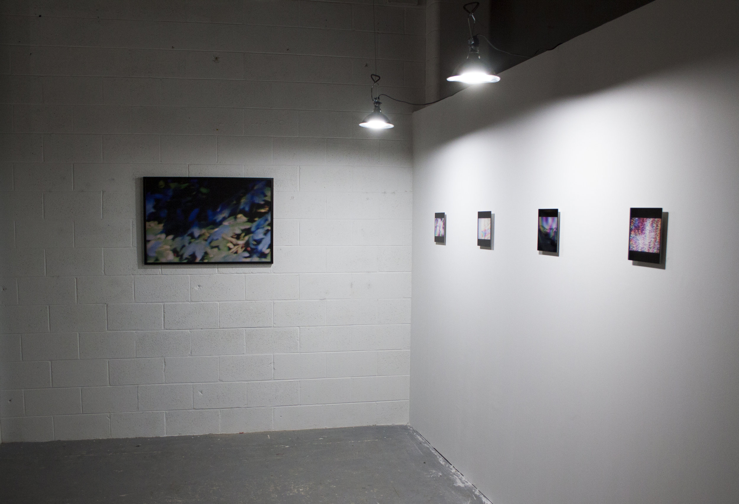 Installation view, Essex II and Ephemera Series