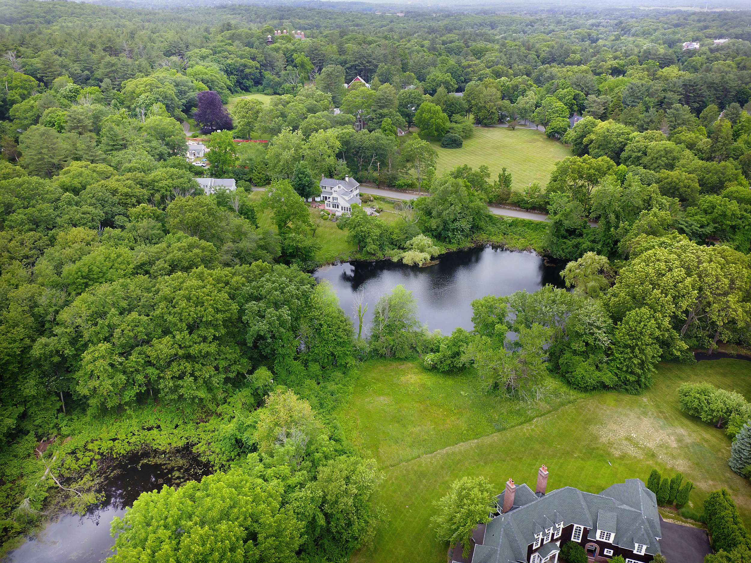 *Aerial view pond copy.jpg