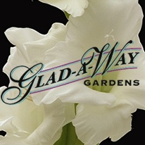 "Gal-A-Way   Glad-A-Way Gardens began selling flowers from a roadside stand in Northern California. In the early days, customers referred to buying the fresh cuts as traveling ""A Ways"" to get some glads, hence the name Glad-A-Way was born."