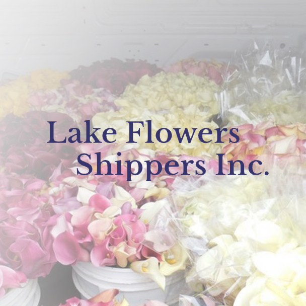 Lake Flowers Shippers   California Fresh Flowers and Greens wholesaler!
