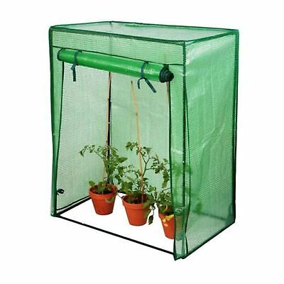 I cannot find a picture of the home made version of the greenhouse I mention below, but this is very similar. You could buy something like this mini greenhouse, or build one, to put over your citrus tree in winter. Plug in the Christmas lights during cold nights and cold snaps, it will look festive and be perfectly happy in it's warm little mini greenhouse. Use the greenhouse in spring for your seedlings.