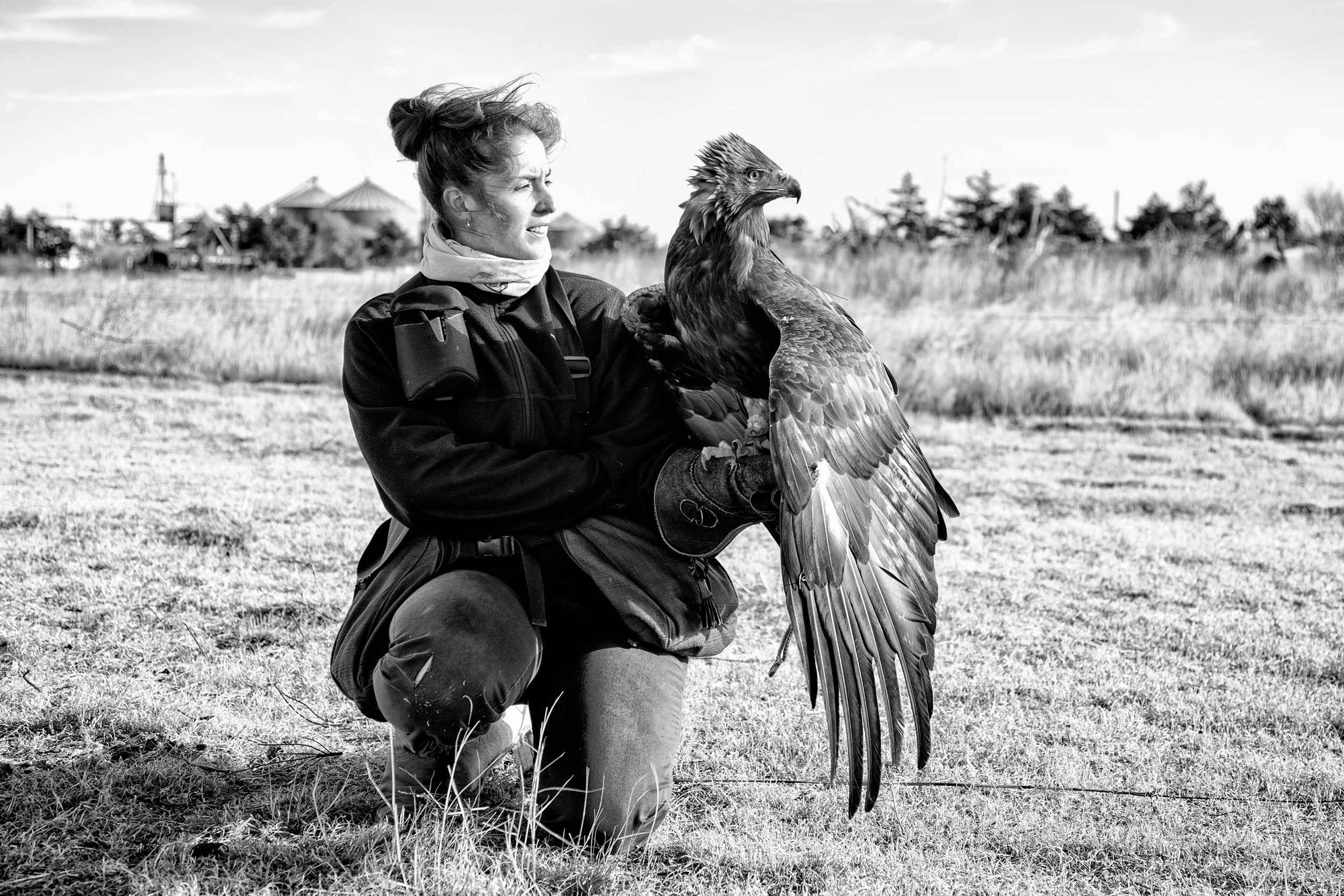 Buck the Cubicle Lauren McGough Eagle Falconer