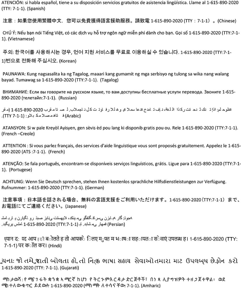 Unity Language Services.png
