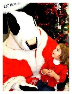 CFA santa cow.jpg